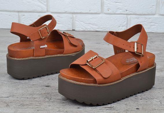 Купить туфли домашние спб
