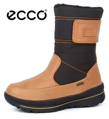 ᐉ Купить Сапоги женские зимние кожаные Ecco Gore-Tex Terra Brown ... 70afbf7da6ffd