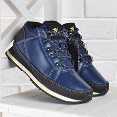 274a333b1379f6 КупитиКросівки Ax boxing waterproof весна-осінь сині фото, в  інтернет-магазині взуття Nanogu